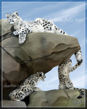 Snow Leopard Family Portrait by Chaotica-I