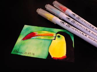 Keel-billed toucan by BlackEyesSnowAngel