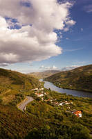 The Grapes from Douro by Jikul