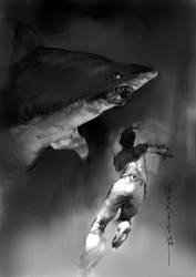 shark shark by zhanglu