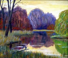Pond at dusk by Markkus76