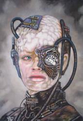 Seven of Nine Borg by Horakso
