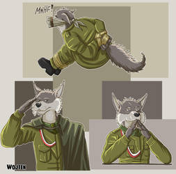 art-trade: Wojtek by SteinWill