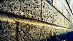 Brick Walls Hide Feelings by ErinKatie101