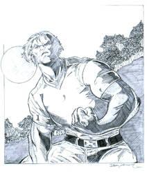 Wolverine by Rafalligator
