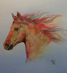 Colorful horse by Yakise