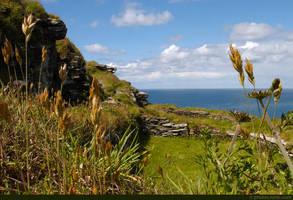 Tintagel Castle Ruins by runique