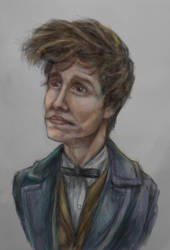 Newt Scamander by Methiston