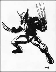 Wolverine by JOrte