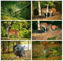 Deer Hunters by dejz0r