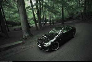 BMW 335 .2 by dejz0r