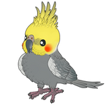 birby birb Coco by AltairSky