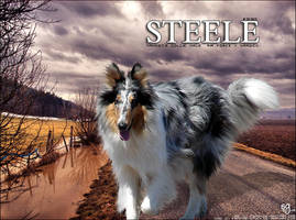 Mahden's STEELE by magsislove