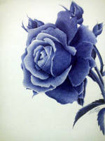 LOVE IN BLUE by flak2013