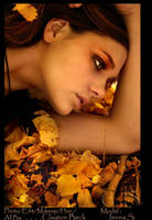 fall glow by CBeck