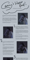 Horse Preparation Tutorial by Lunarlueur