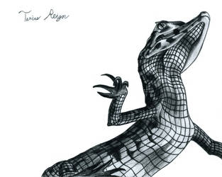 Caiman by Tanias-Reign