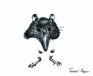 Mouse by Tanias-Reign