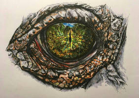 Study of a crocodile eye by AngelaMende