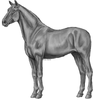 FREE - standing horse greyscale by Bright-Button