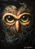 Owl by cingram