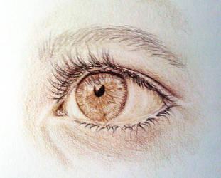an eye derwent drawing pencils by MorgaineA