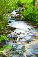 Creek by jelinjer
