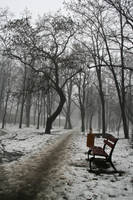 Winter.. by misplacedApathy