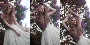 spring by Avine