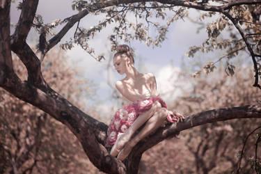 fairy by Avine
