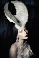Swan III by Avine