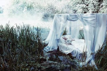 sleeping beauty by Avine