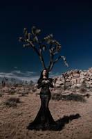 Desert's shadows by Avine