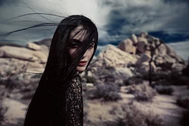 wind by Avine