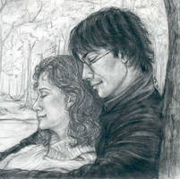 Harry and Hermione ship by LMRourke