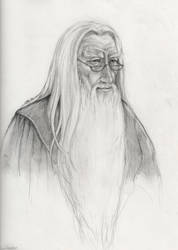 Headmaster Dumbledore by LMRourke