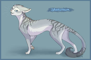 Warrior Cats - Silverstream by VanyCat