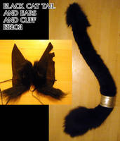 Cat tail and cuff and ears by Magpieb0nes