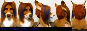 Hazy Dingo Head Turnaround by Magpieb0nes
