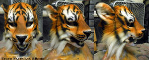 Tiger Face Mask by Magpieb0nes