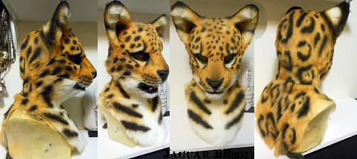 Jaguar Head by Magpieb0nes