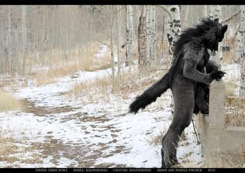 Werewolf: Graveyard shoot 004 by Magpieb0nes