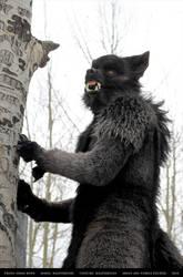 Werewolf: Graveyard shoot 008 by Magpieb0nes