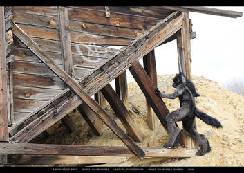 Werewolf: Graveyard shoot 011 by Magpieb0nes