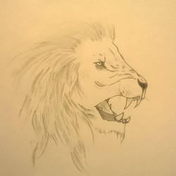 The Lion's Roar - Finished by Kafu47