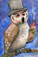 Sophisticated Owl by kookybat