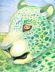 Turtle Leopard by kookybat