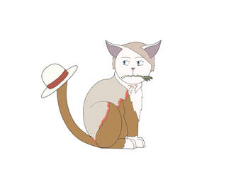 Doctor Meow the 5th by Wingdings66