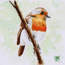Robin by Strooitje