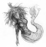 Mermaid by PtarmiganMan